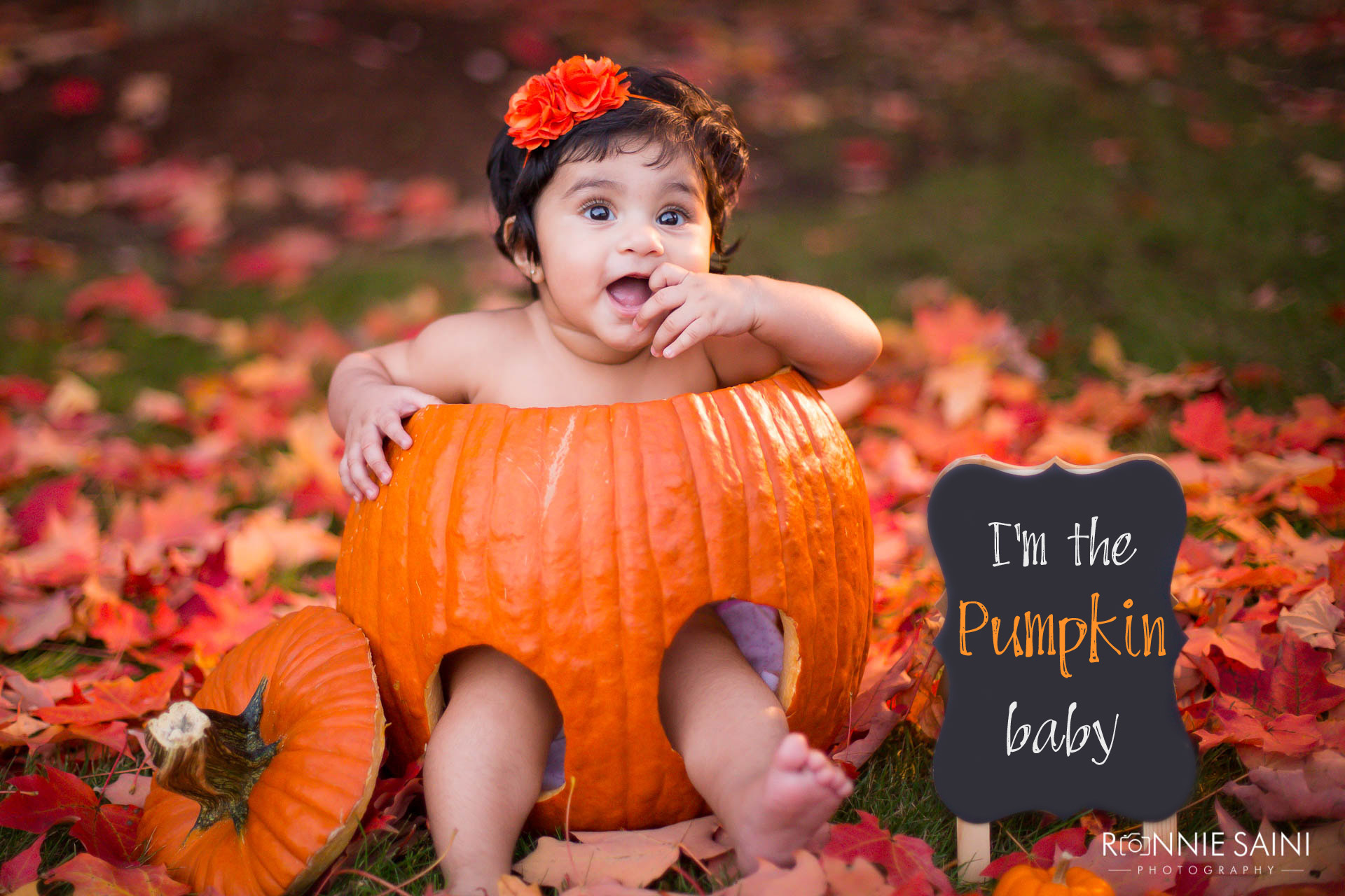 Baby in a pumpkin fall portrait session boston ronnie saini