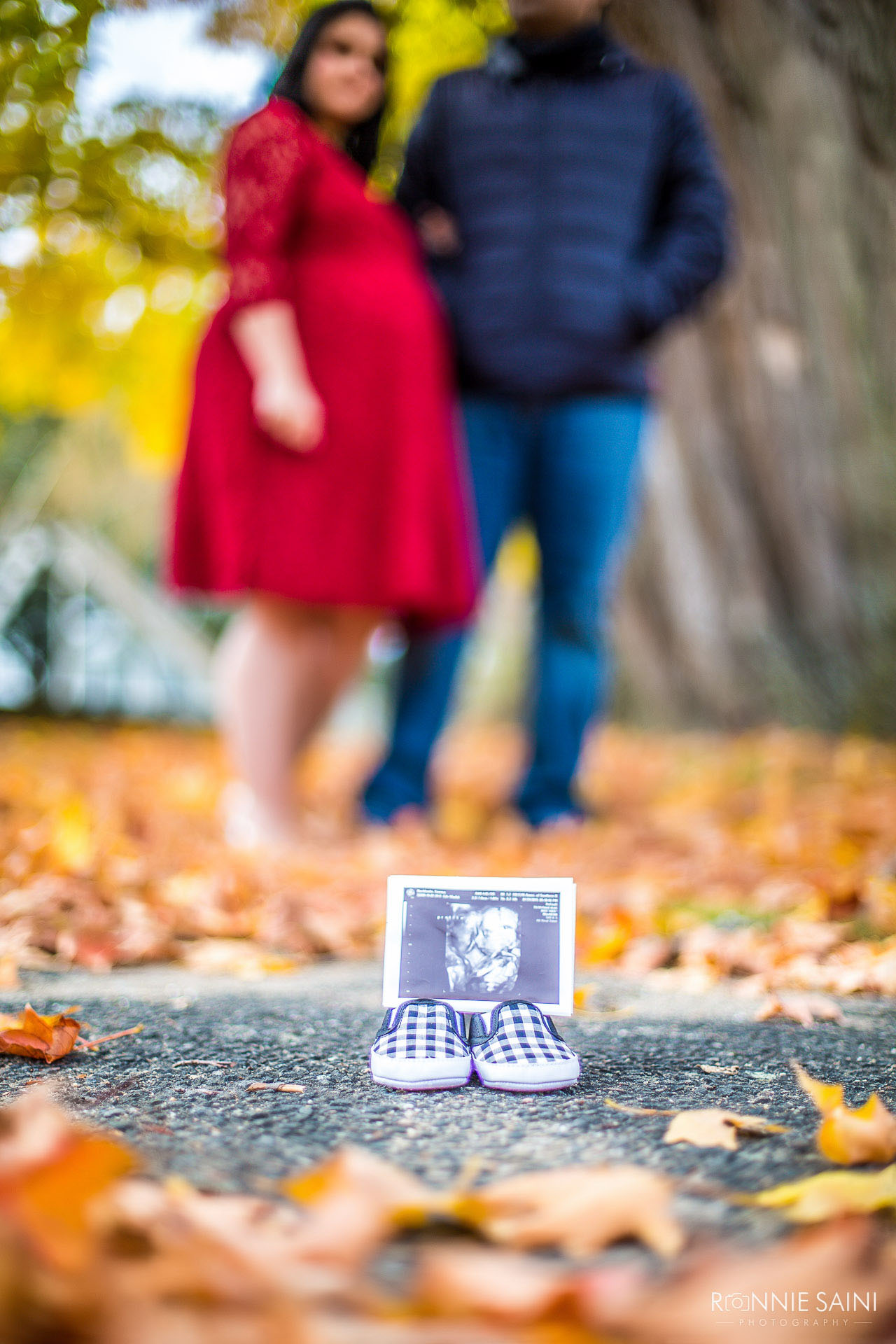 Fall Foliage Maternity Photography Boston