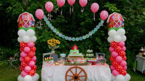 Farm Themed First Birthday Party Ideas And Photographs