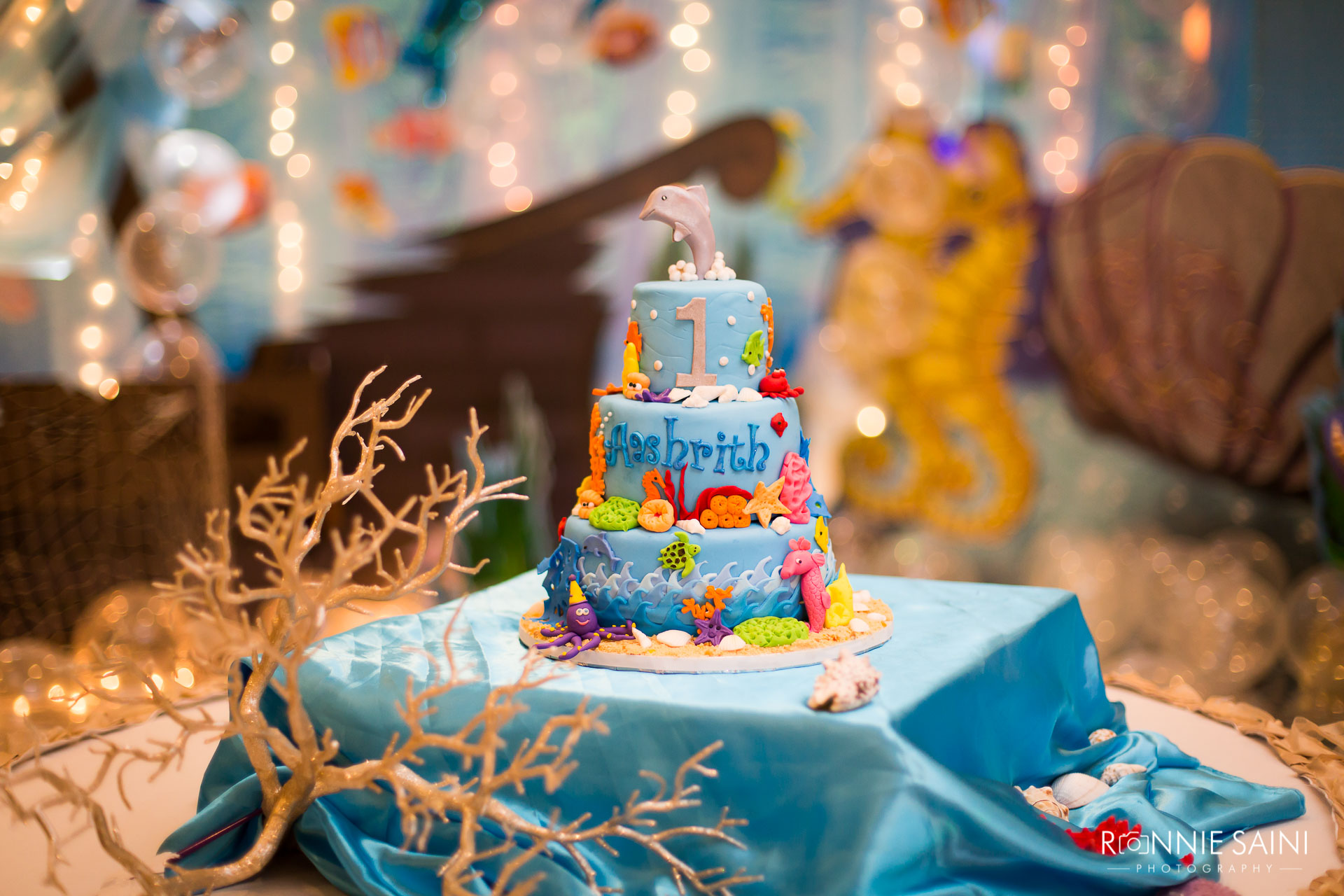 Kids Birthday Party Event Photography Boston Ronnie Saini Photography